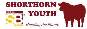 SB Youth Logo - Building the Future