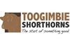 Toogimbie_web_logo2-2