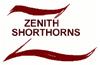 Zenith-2